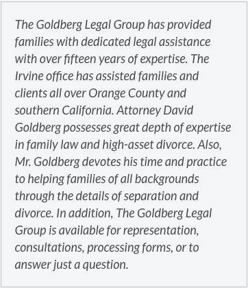 The Goldberg Legal Group has provided families with dedicated legal assistance with over fifteen years of expertise.